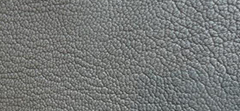 PEARLIZED GRAINY LEATHER